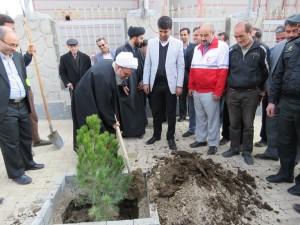 حسن ختام غرس ۱۰۰۰ اصله نهال در شهر خامنه با برگزاری مراسم روز درختکاری